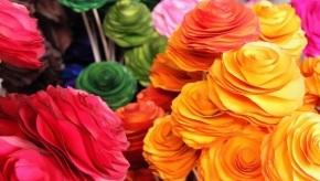 flowers-wood-1407891-m