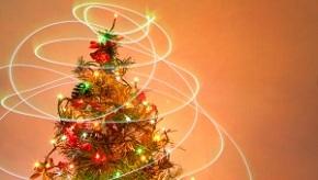 christmas-tree-10-1409682-m