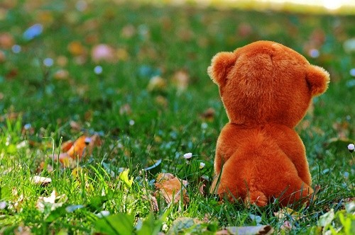 teddy-bear-861061_960_720