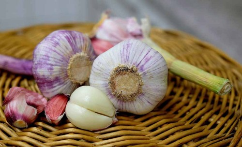 garlic-1144921_960_720